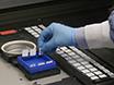 Generazione di due colori Antigen microarray per la rilevazione simultanea di autoanticorpi IgG e IgM thumbnail