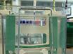تحليل سكاب<em&gt; N</em&gt; -glycosylation والاتجار في الخلايا البشرية thumbnail