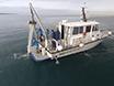 Protocol for Microplastics Sampling on the Sea Surface and Sample Analysis thumbnail
