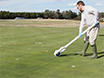 Protocols for Quantifying Transferable Pesticide Residues in Turfgrass Systems thumbnail