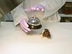 Neurodevelopmental Reflex Testing in Neonatal Rat Pups thumbnail