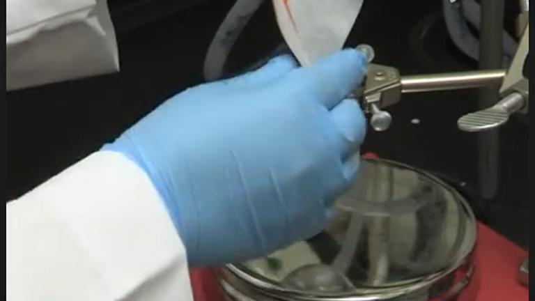 Nanosponge Tunability i størrelse og Crosslinking tæthed thumbnail