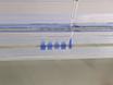 Quantification of the Abundance and Charging Levels of Transfer RNAs in <em>Escherichia coli</em> thumbnail