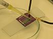 בסיוע זרימת Dielectrophoresis: שיטה בעלות נמוכה עבור הזיוף של התקני ננו-חוט processable-פתרון ביצועים גבוהים thumbnail