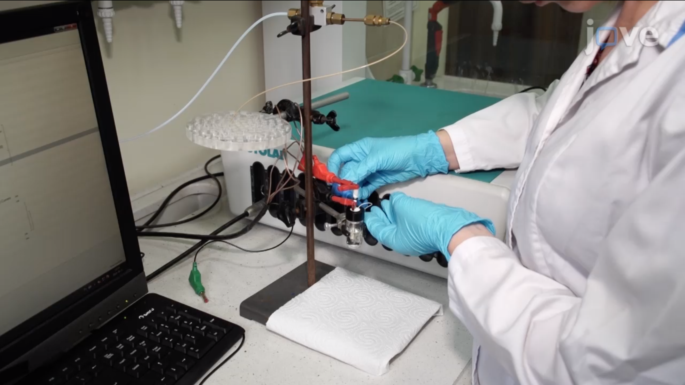 Using Cyclic Voltammetry, UV-Vis-NIR, and EPR Spectroelectrochemistry to Analyze Organic Compounds thumbnail