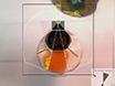 SwarmSight: 곤충 안테나와 일반적인 준비와 기존 하드웨어를 사용 하 여 코 확장 반사의 실시간 추적 thumbnail