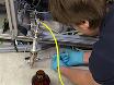 Chimie de la combustion de combustibles: spéciation quantitatives de données provenant d'un réacteur à flux haute température atmosphérique avec couplé spectromètre de masse faisceau moléculaire thumbnail