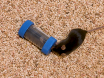 चूहों में स्थानिक सीखने और सामाजिक व्यवहार का विश्लेषण बार्ंस भूलभुलैया और युवती-में-संकट मानदंड का उपयोग thumbnail