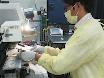 Micropunção do espaço de Bowman em camundongos facilitada pela microscopia de fóton 2 thumbnail