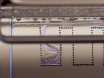 Isolation of Extracellular Vesicles from Murine Bronchoalveolar Lavage Fluid Using an Ultrafiltration Centrifugation Technique thumbnail