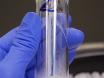 Isolasjon av voksen ryggmargen kjerner for massivt parallelle Single-kjernen RNA sekvensering thumbnail