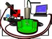 Operant Learning of Drosophila at the Torque Meter thumbnail