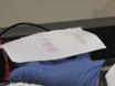 Immunoblot-Analyse thumbnail